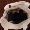 写真: 100均で購入したカメラ用薄布バッグ