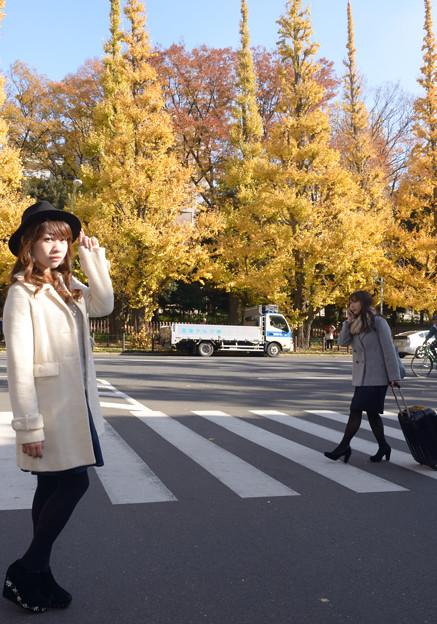 写真: 男心と秋の空~♪