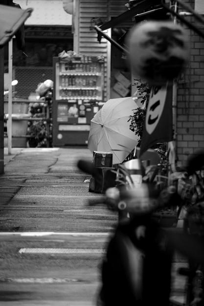 Photos: 傘