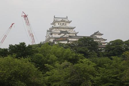 シロトピア公園から姫路城 - 2