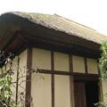 Photos: 世田谷代官屋敷(大庭家住宅) (1)