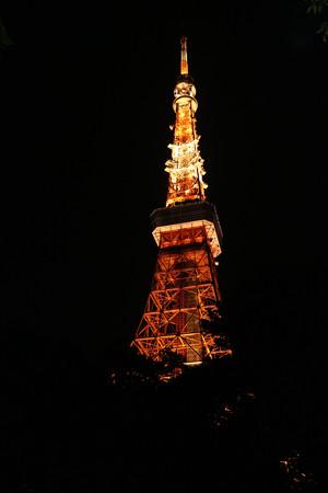 東京タワー (8)