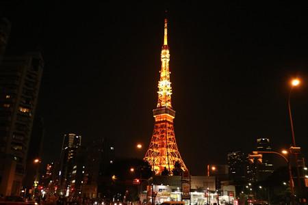 東京タワー (9)