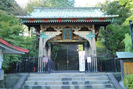 狭山山不動寺 (1)