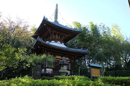 狭山山不動寺 (11)