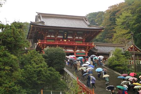 鶴岡八幡宮 (1)