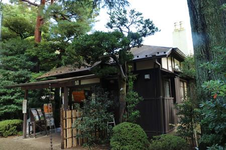 殿ヶ谷戸庭園 (15)
