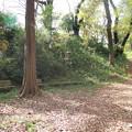 写真: 片倉城 (7)