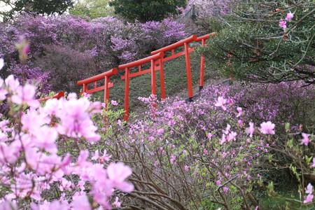 獅子崎稲荷神社 (13)