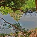 川面に写る烏城