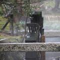 Photos: 後楽園水車