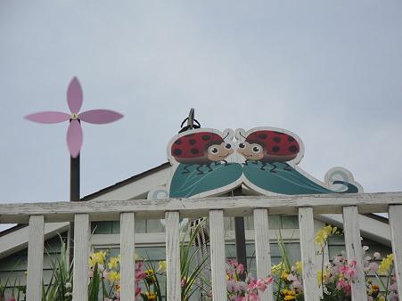 クック・オフの楽しい屋根