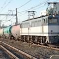 Photos: EF65  2060牽引石油専用貨物8179レ雀宮通過