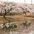 桜水鏡 EF66