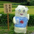 Photos: ふなっし~?