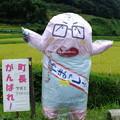 Photos: ぱくり?