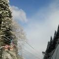 雪降りました~!