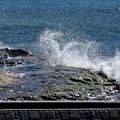 Photos: rs-151008_12_岩礁と波濤(鎌倉) (76)