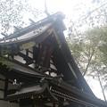 写真: 庇の上に鰹木がある珍しい社殿です。