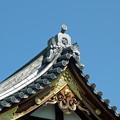 写真: 亀戸天神社.5
