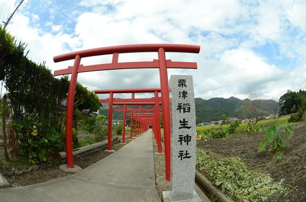 粟津稲生神社3