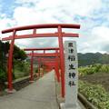 Photos: 粟津稲生神社3