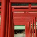 Photos: 粟津稲生神社4