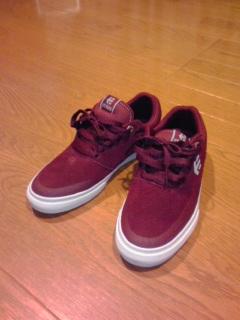 あんま詳しくないけどスケボー用にetnies(エトニーズ?)の靴買ってきた...