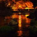 黄金の川面