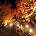 黄金に染まる階段