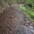 140513-128東北ツーリング・湯の又大滝・酷い道