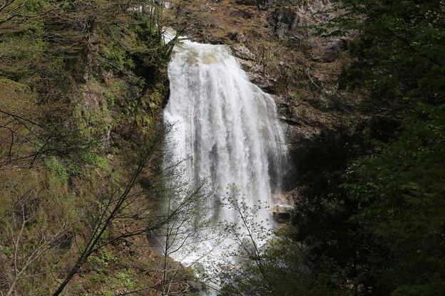 Photos: 140513-133東北ツーリング・湯の又大滝