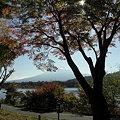 写真: 091106-11紅葉と富士山と河口湖4