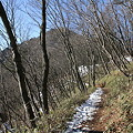 写真: 100116-23大岳山・馬頭刈尾根 大岳山?