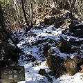 写真: 100116-42大岳山・馬頭刈尾根 後だし