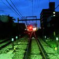 Photos: 早朝の小田急線