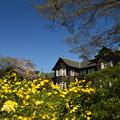 春色の洋館