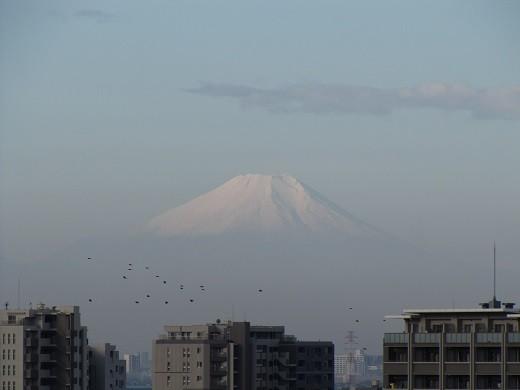 富士山初冠雪(2014.10.16)