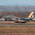Photos: F-15DJ Aggressor 095 lineup