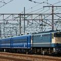 北びわこ号 送り込み【EF65 1133牽引】