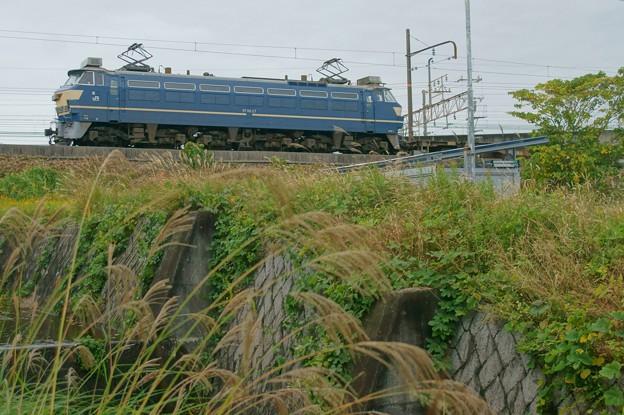 Photos: EF66 27【5071レ】