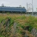 EF66 27【5071レ】