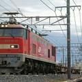 Photos: 3095レ【EF510-11牽引】