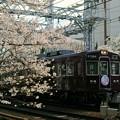 桜と阪急電車(さくらHM)