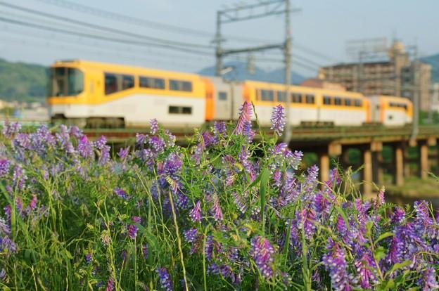 Photos: 楽