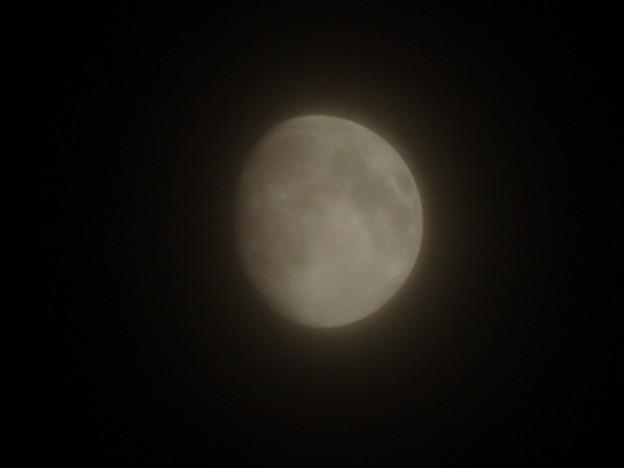 20140906 20時過ぎの月