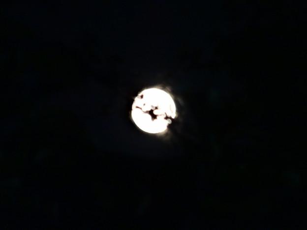 月のメリーゴーランド♪