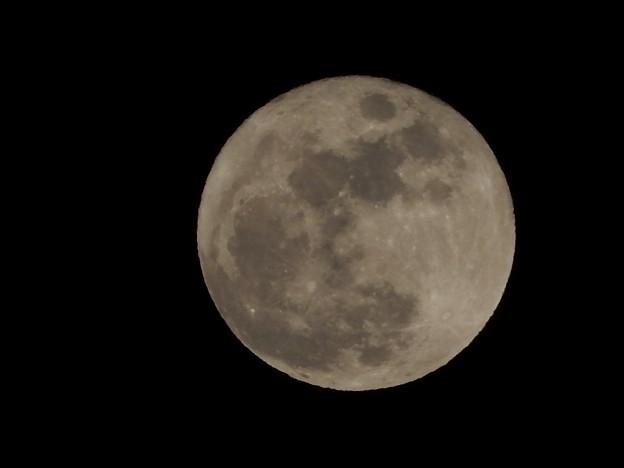 20160124満月