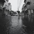 また雨(処理違い)