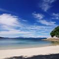 白砂青松のプライベートビーチ